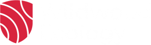 wildwood-ecology-logo
