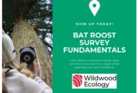 Sign-Up-Bat-Roost-Survey-Fundamentals-770x516