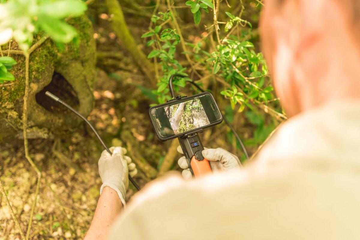 Vacancy: Senior Ecologist